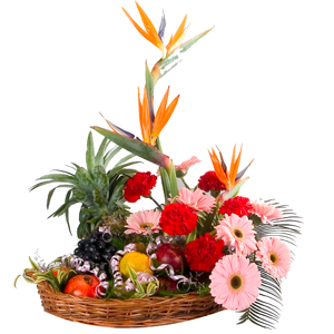 Special Exotic Fresh Fruits and Flowers to India.